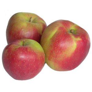 Jabłko Bio